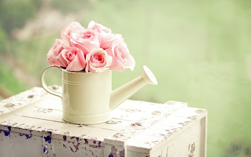 6785011-cute-pink-flowers-wallpaper